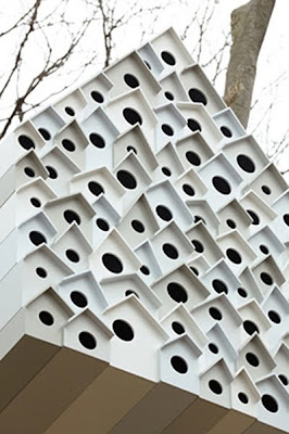 the bird apartment collective housing for 78 birds and. Black Bedroom Furniture Sets. Home Design Ideas