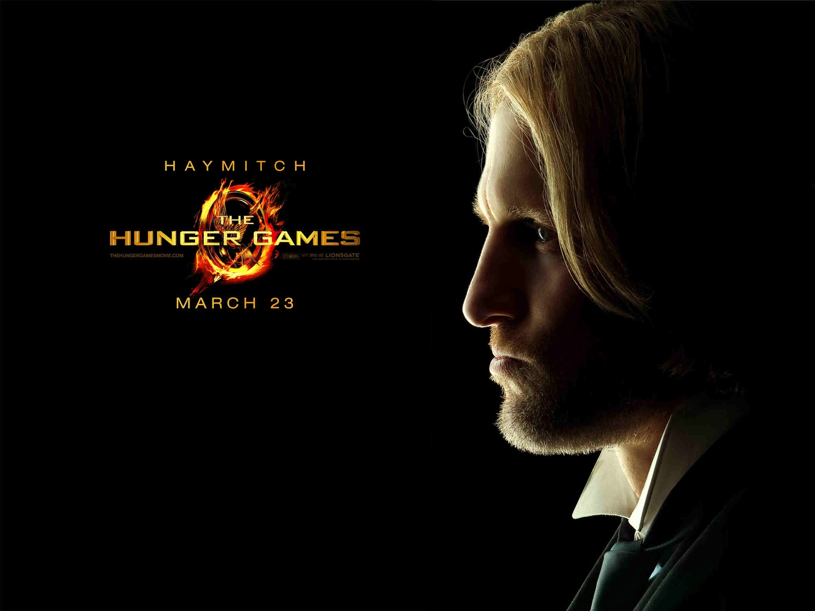 http://4.bp.blogspot.com/-fAqv6u2emec/UHwbNm5TqtI/AAAAAAAAABc/f-Mz6qP9tDY/s1600/The-Hunger-Games-Wallpapers-2560x1920-2.jpg