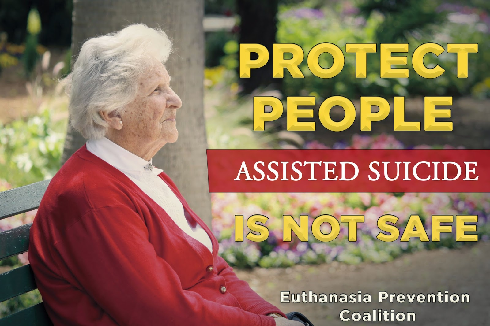 a study on assisted suicide or euthanasia The subject matter concerned attitudes towards euthanasia and physician-assisted suicide (pas), the authors of the papers sent questionnaires out to a number of currently practicing doctors and analysed the results using data analysis methods.