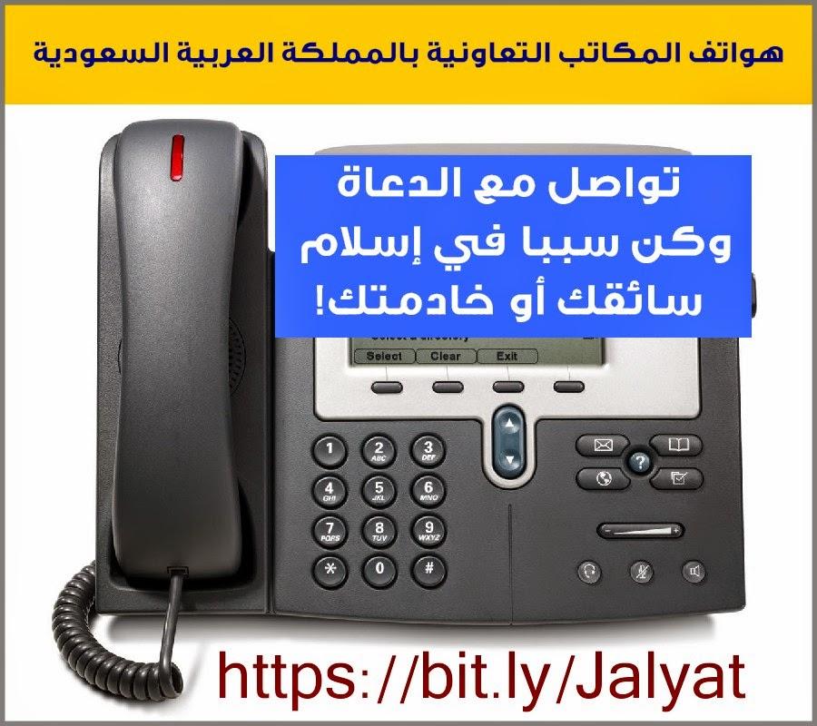 هواتف المكاتب التعاونية، الدعاة، خادمة، سائق
