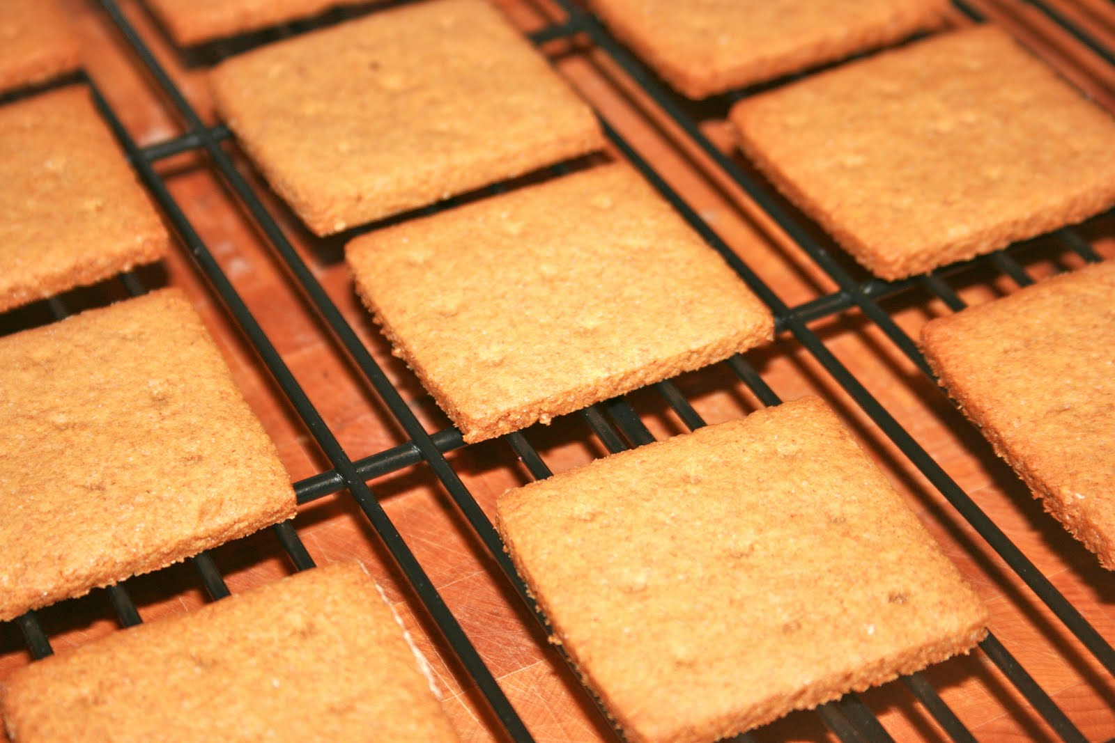 Homemade Graham Crackers & S'mores | Krissy's Creations