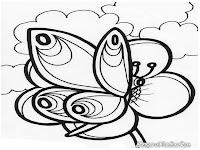 Gambar kupu-kupu hinggap diatas bunga