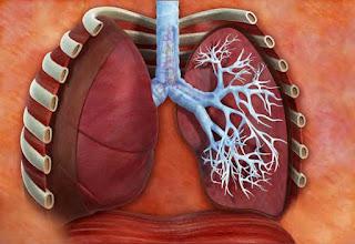 Classificação dos sintomas da Asma