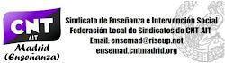 ENLACE SINDICATO DE ENSEÑANZA E INTERVENCIÓN SOCIAL