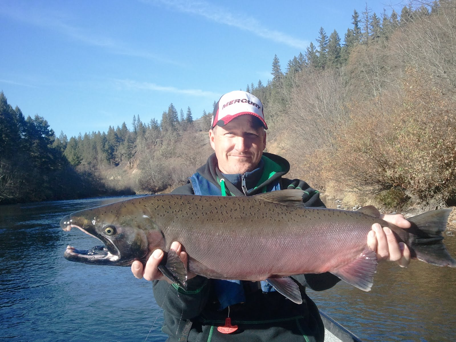 Rogue River Coho Salmon
