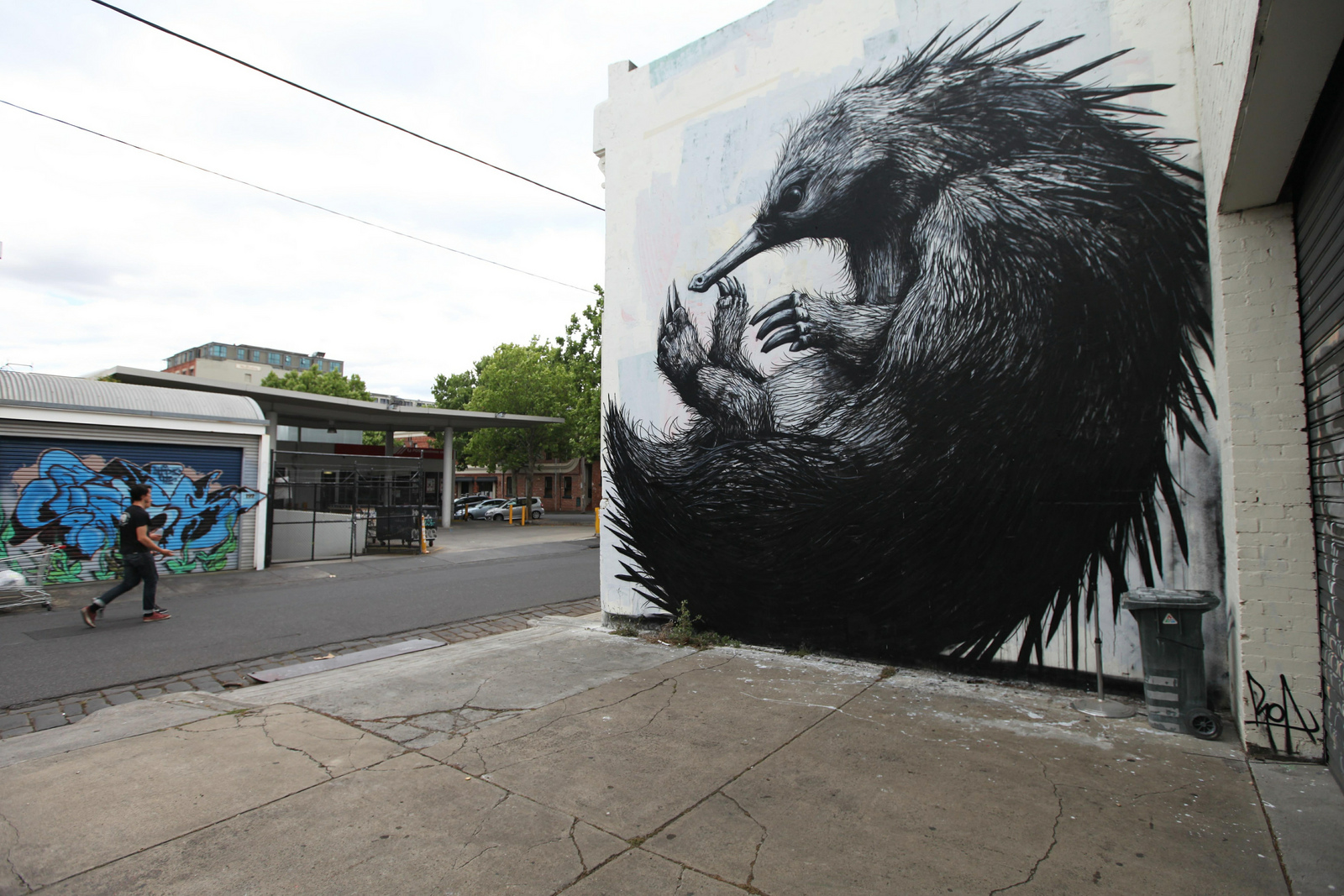 Roa new murals in melbourne australia part ii for Australian mural