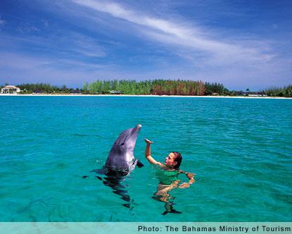 praia de areia branca, mas com águas cristalinas e uma mulher com golfinho