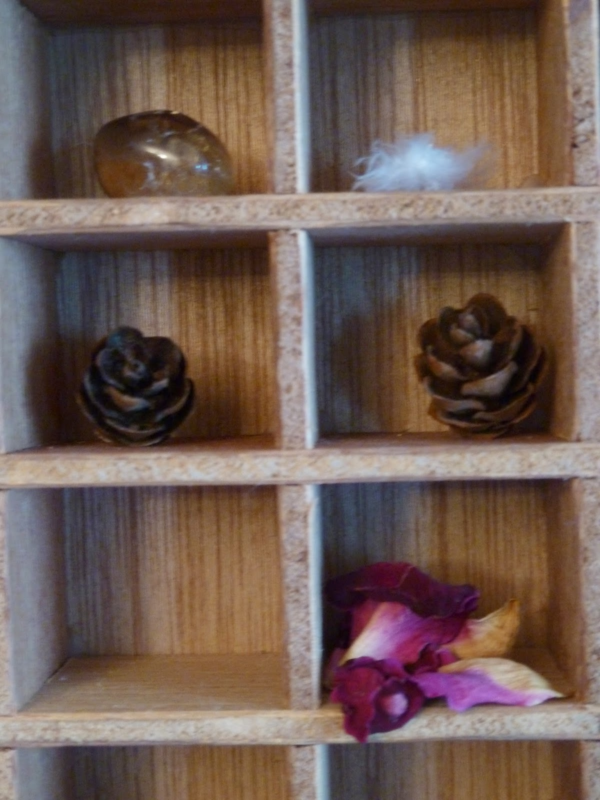 Crystal, feather, pine cones and petals in my treasury