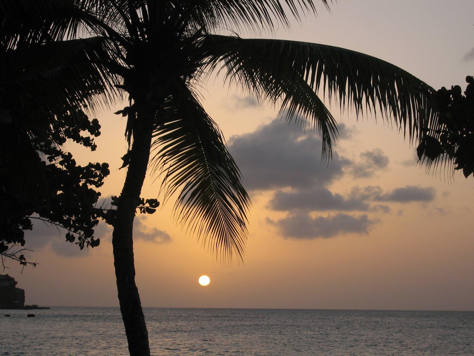 Caraibe, Grenada, 2014