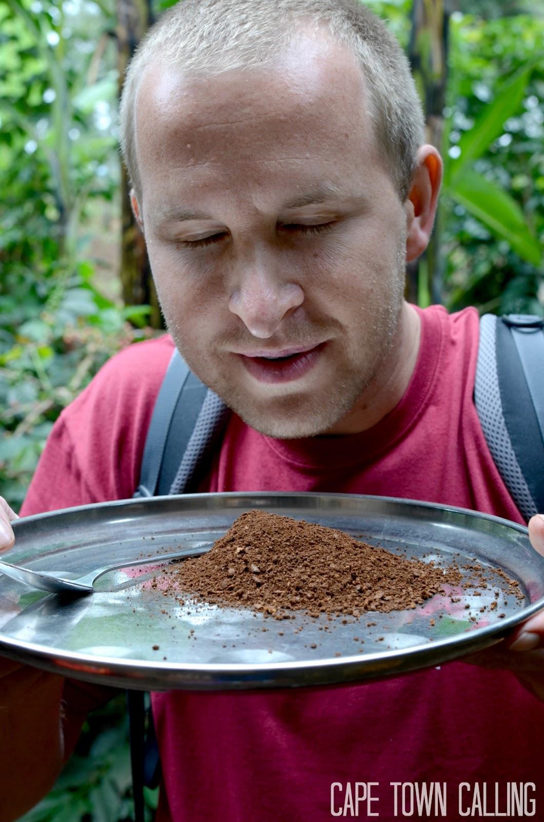 Kilimanjaro Coffee Tour