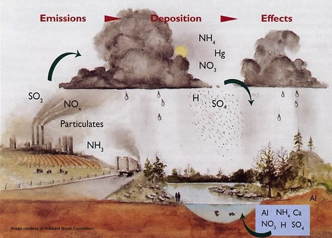 Acid rain effects on humans