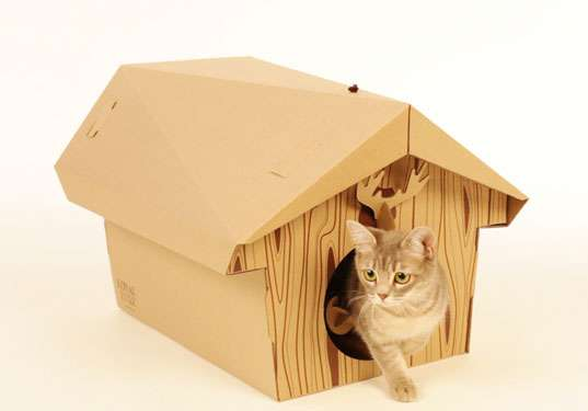 маленький домик для котят своими руками