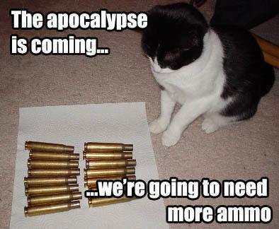 ammo-lolcat.jpg