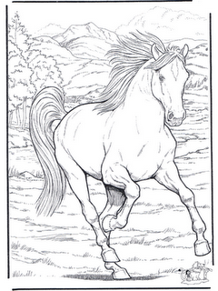 Desenhos Para Colori Cavalos ensinados e domados selados e bonitos desenhar