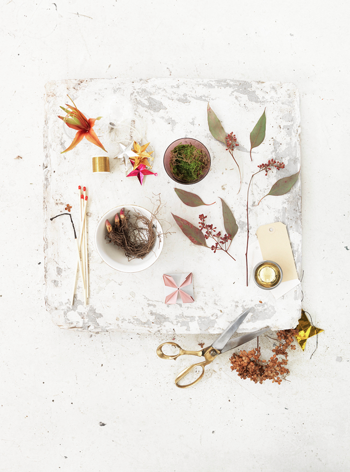 Winter Flowers // Зимни цветя | 79 ideas