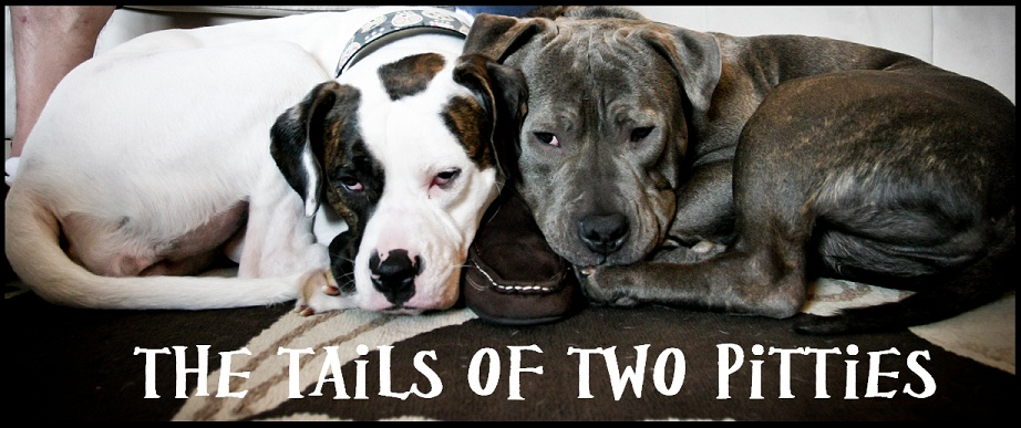 The Tails of Two Pitties