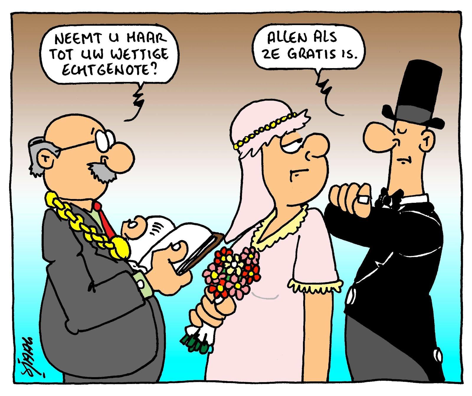 Afbeeldingsresultaat voor trouwen cartoon