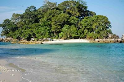Wisata Penyu di Pulau Berhala, Sumatera Utara