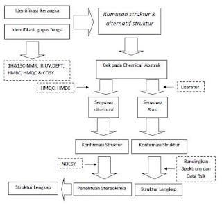 identifikasi triterpenoid dan steroid
