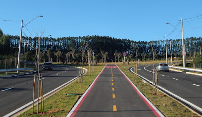 A avenida de mão dupla comporta até três carros emparelhados em casa sentido, uma ciclovia central e passeios laterais para pedestres, devidamente iluminados.  Ao todo são 126.000 metros quadrados de pavimentação asfáltica.
