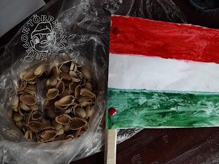 Szöveg: Óvodai zászló pisztácia-héjakkal. Egész forradalmi, ugye? Kép: nájlonzacskóban pisztáciahéjak, a zacskóra fél részén vízfestékkel festett magyar zászló (nyéllel) van téve.
