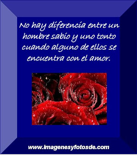 Tarjeta de Amor con Rosas, parte 9