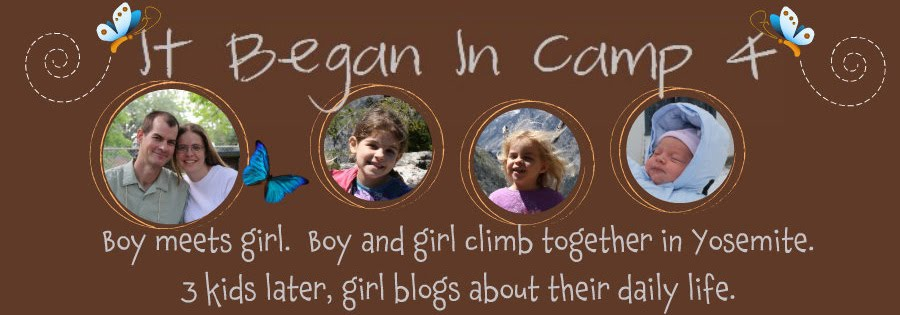 It Began in Camp 4--old blog