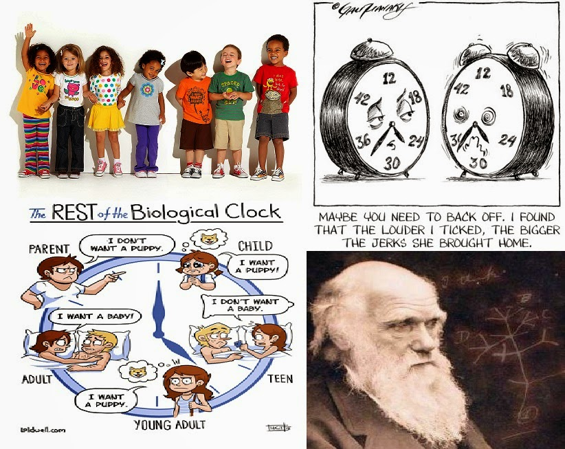 Biological Clock Ticking Day 297 Non Ticking Biological