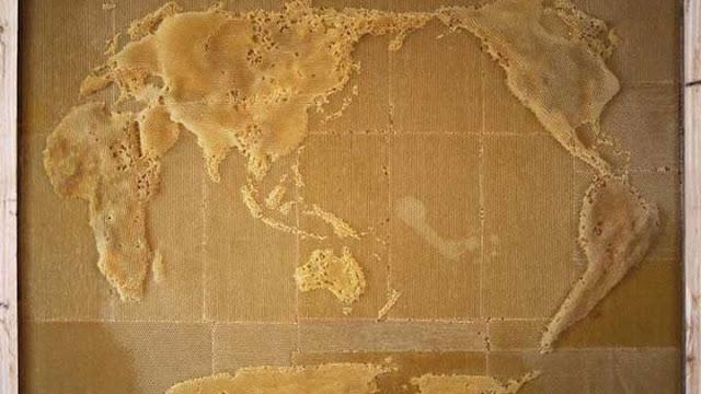 Luar-Biasa-Ternyata-Peta-Dunia-ini-Dibuat-oleh-Lebah