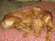 Sadie & Gus