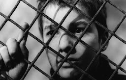 400 Blows/400 Darbe