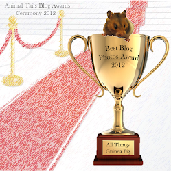 2012 Blog Award