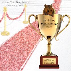 2012 Blog Award