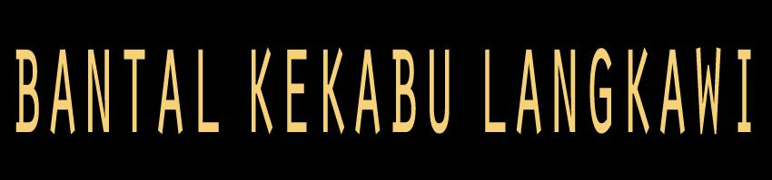 Bantal Kekabu Langkawi