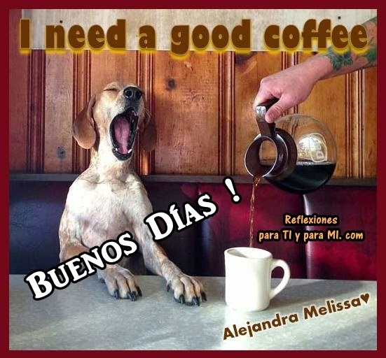 I need a good coffee ... BUENOS DÍAS !