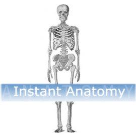 www.instantanatomy.net