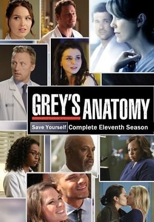 Greys Anatomy - A Anatomia de Grey 11ª Temporada Completa Séries Torrent Download capa