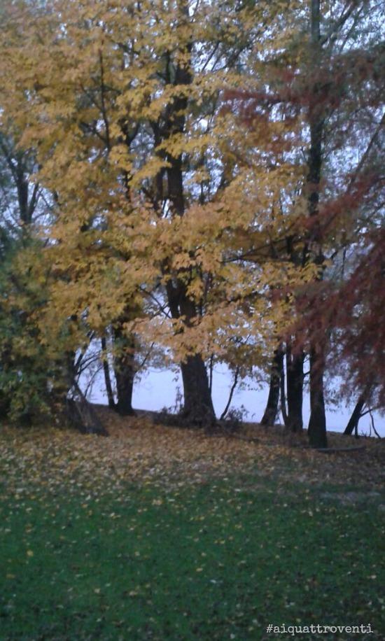 aiquattroventi-autunno-lago-foglie