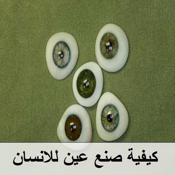 كيفية صنع عين للانسان