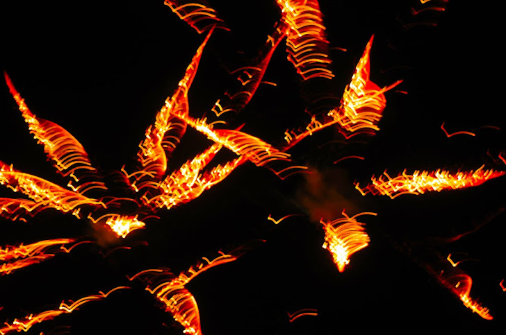 Firework 157
