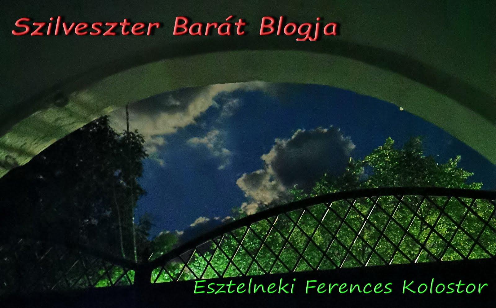Szilveszter Barát Blogja