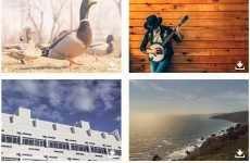 Otros 4 sitios para descargar fotos gratis y libres de derechos de autor