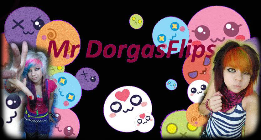 Mr DorgasFlips