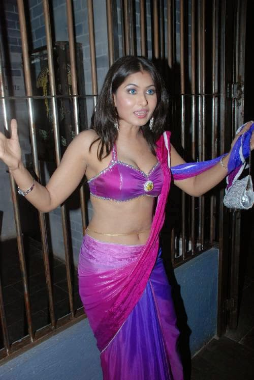 Savita Bhabhi Divya Dwivedi Cleavage Navel Show Photos Low Waist Saree