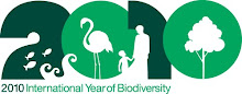 2010 - International Year of Biodiversity