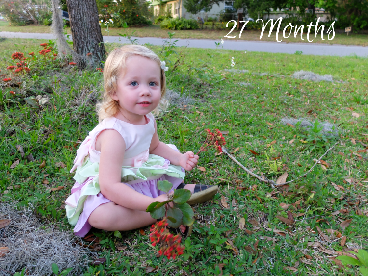 27 Months Old