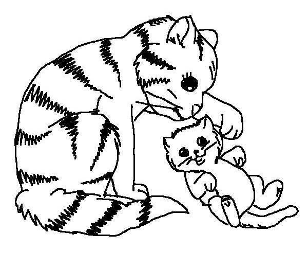 baby cat coloring pages - photo#13