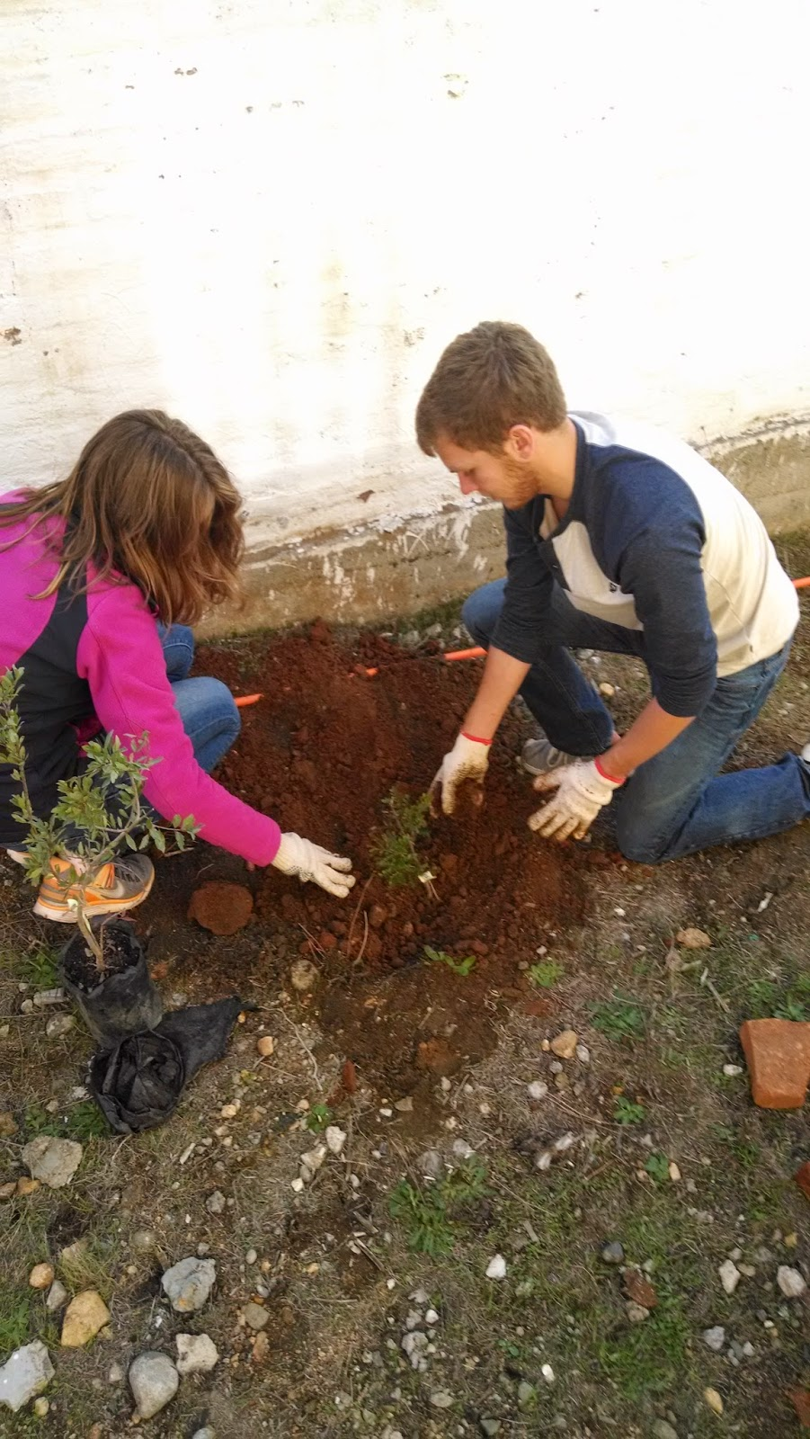 Lynn and Evan planting a tree at a local school