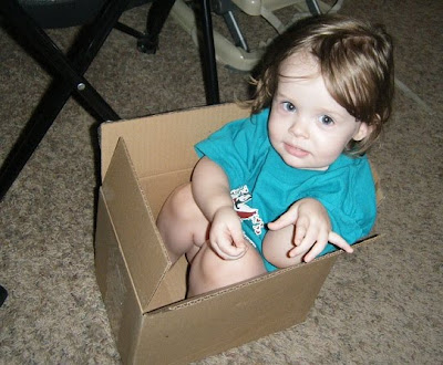 Sasha in a box