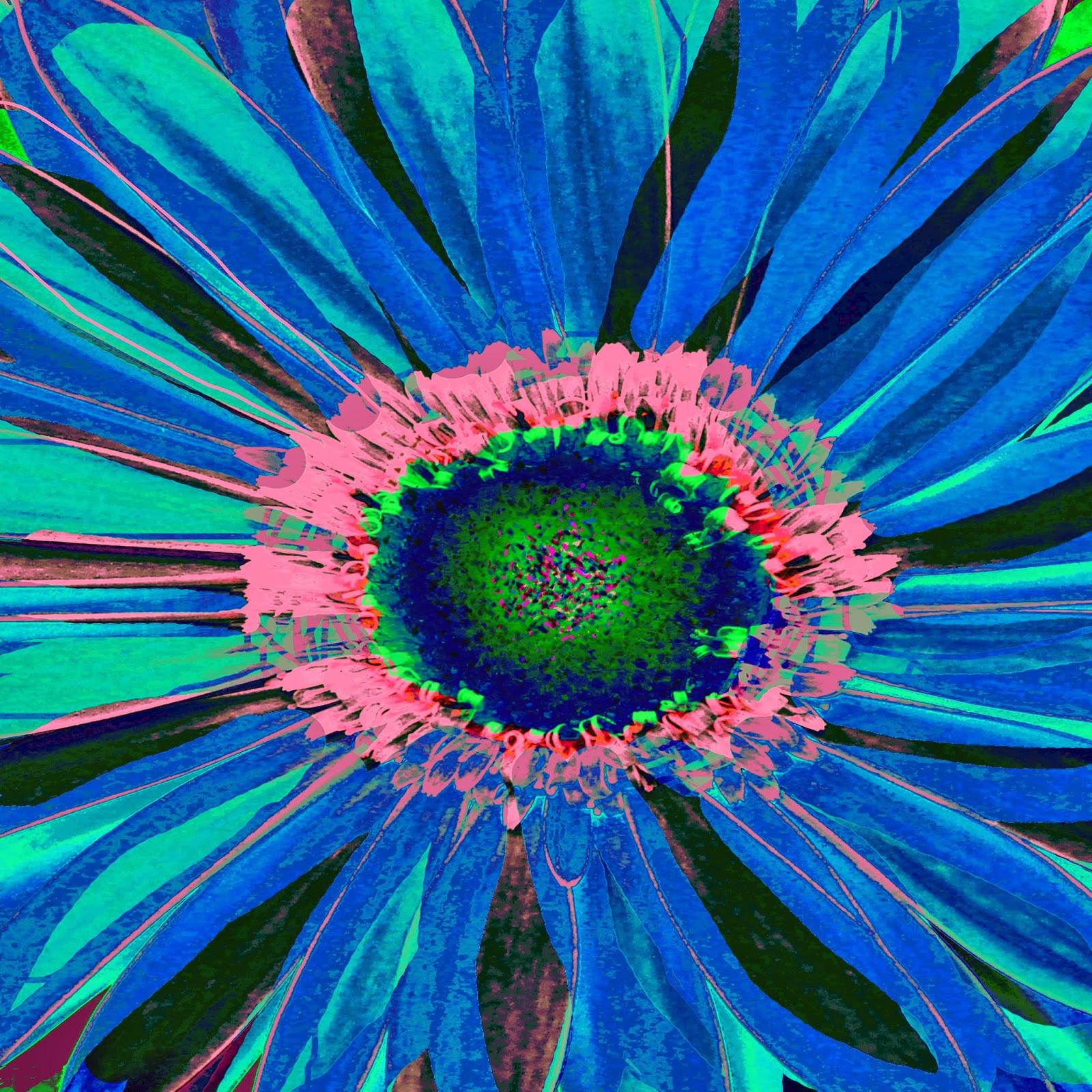 Gerbera daisies art print  Ricki Mountain...
